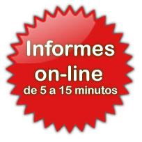 Informe de trafico online